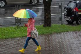 Желтый уровень опасности, сильный ветер, дожди ипервый снег (мокрый). Все опогоде всреду