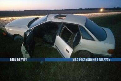 В Слонимском районе перевернулась Audi— пострадали три человека, втом числе двое детей
