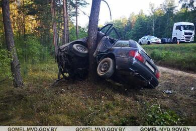 В Калинковичском районе Audi намотало надерево. Предварительно, 18-летний водитель уснул зарулем
