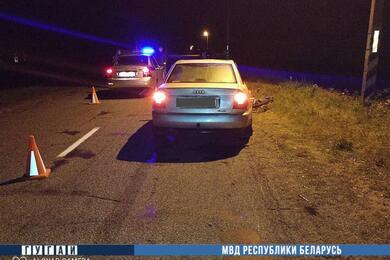 В Речицком районе Audi при встречном разъезде насмерть сбила велосипедиста