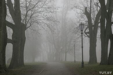 Осторожно, туман! Синоптики объявили желтый уровень опасности