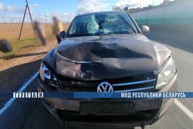 В Минской области Volkswagen насмерть сбил велосипедиста