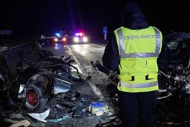 На трассе М5 Audi сбила 19-летнюю девушку, после чего влетела вовстречный VW— погибли три человека