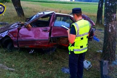 В Слуцком районе Renault врезался вдерево— погибли два человека