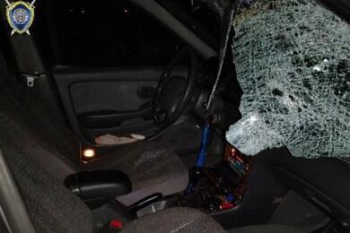 Пешеход погиб под колесами автомобиля вПинском районе