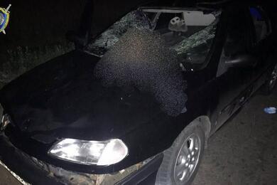 В Вороновском районе Renault насмерть сбил пешехода