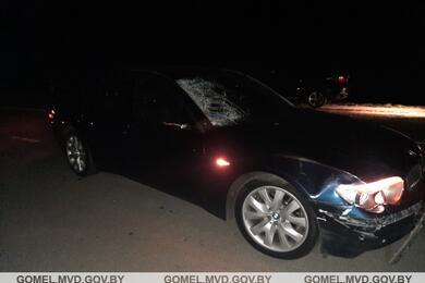 В Ветковском районе BMW насмерть сбил пешехода