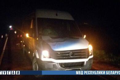 В Светлогорском районе микроавтобус насмерть сбил велосипедиста