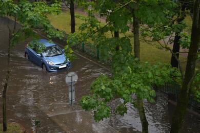 Упавшие деревья, задержка поездов исмертельный удар молнией. ВМЧС рассказали опоследствиях непогоды