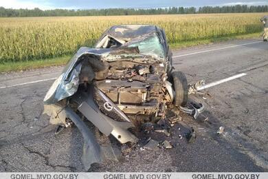 В Лоевском районе Mazda сбила лося, выехала навстречку иврезалась вгрузовик
