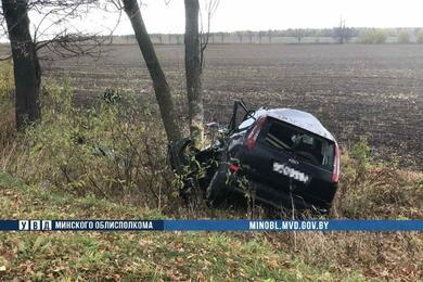 На трассе Р53 вМинской области Ford врезался вдерево— водитель погиб