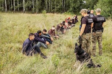 Polish border patrol officers detain people attempting to cross the border between Belarus and Poland