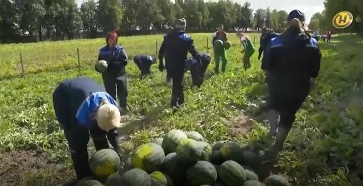 Скриншот видео ОНТ
