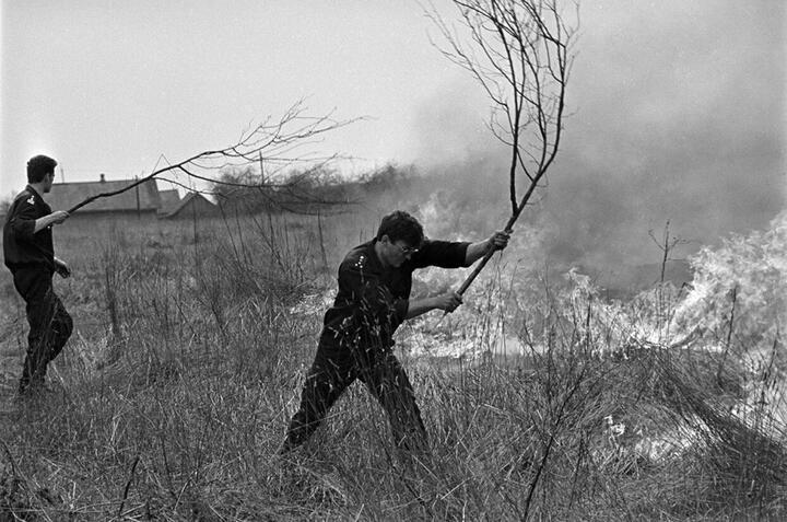 Пожары 1992 года в Беларуси. Фото: Сергей Брушко